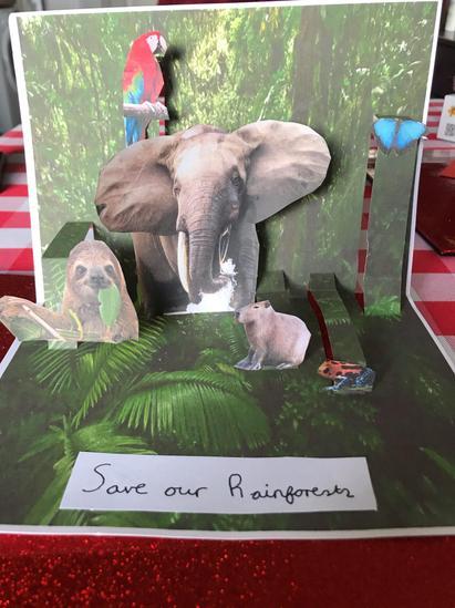Regan's Pop-Up Rainforest