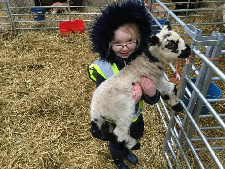 Visiting Zoe's farm to cuddle the lambs.