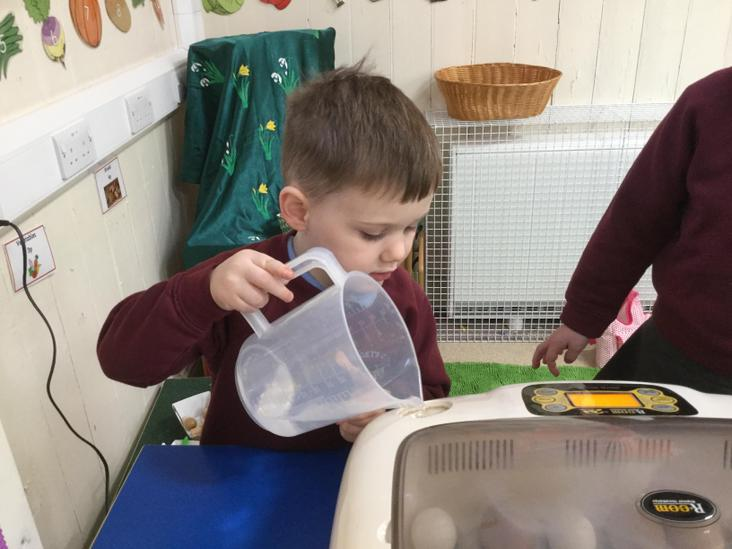 Nurturing our eggs by topping up the incubator.