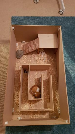 Ella's Hamster Miniature World