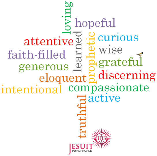 Pupil Profile - The Jesuit Institute 1