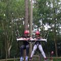 Giant swing