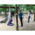 Monkeying around at Black Park