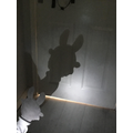 Nancy's Easter Bunny Shadow Puppet (Y3)