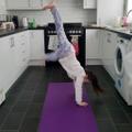 Abigail's cartwheels