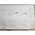 Joshua's Food Chains (Y4)
