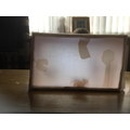 Emily's Shadow Puppet (Y5)