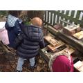 Building a bug house!