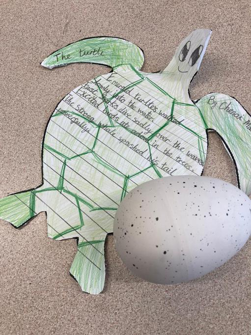 Our very own turtle egg alongside a thoughtful sealife poem written by Chenai