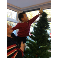 Putting the star on the top of our tree!
