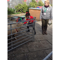 Acorn Farm Visit