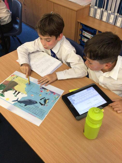 Reading and translating French stories