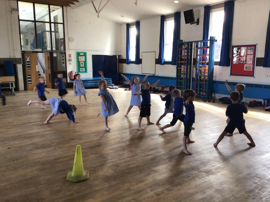 Monkey's in Motion Dance