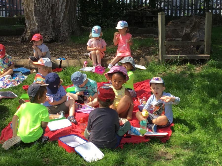 Fun in the sun picnic lunch