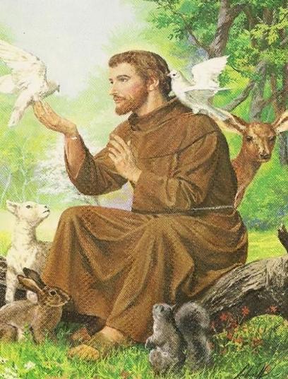 Saint Francis of Assisi - Year 5