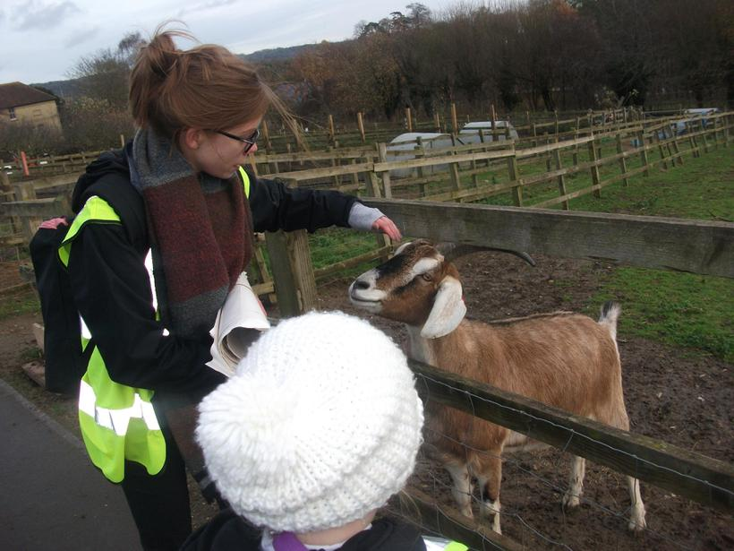 Mrs Hammond made friends with the goat!