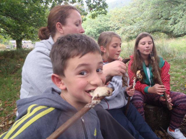 Snowdonia. Tahm enjoying a treat!