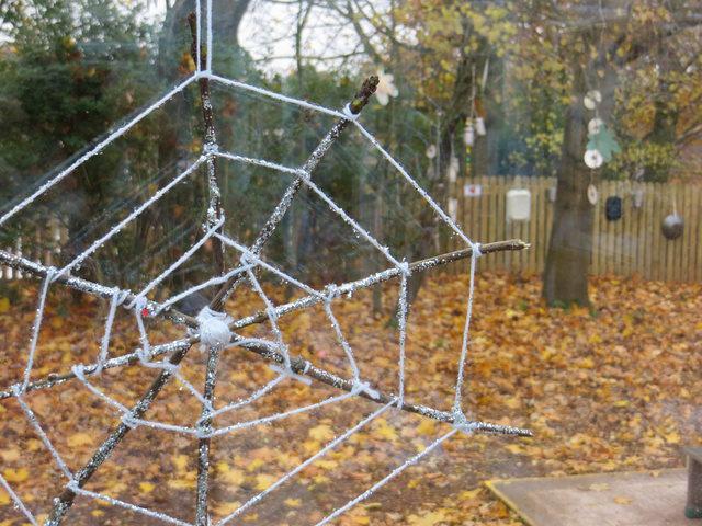 wintery cobweb!