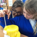 Investigating thermal insulators in Science...
