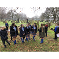 Y6 locate VC War Graves in Anfield Cemetery