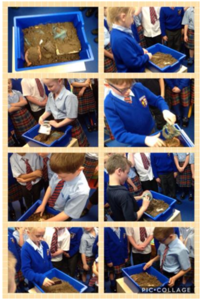 A photo collage of our exciting lesson!