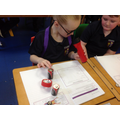 Year 4 - Exploring existing torch products