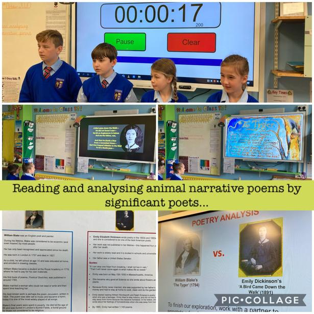 Reading and analysing narrative poems by significant poets