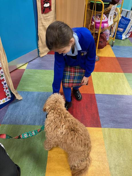 Giving Mabel the Maths dog treats after working on our times tables