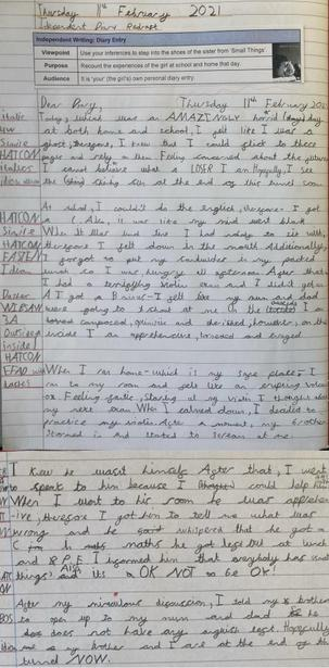 Independent Diary Entry Final Write