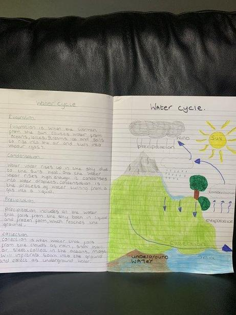 Honor's Water Cycle