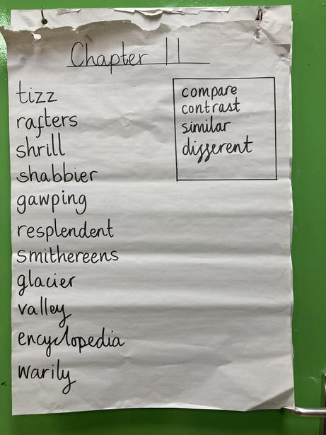 Exploring Vocabulary in our Class Novel