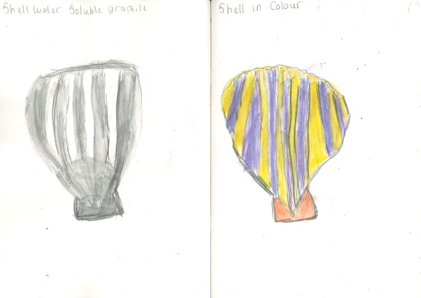 Shell in colour and soluble graphile
