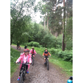 Mountain biking at Delamere.