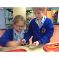 Year 4 - Using a garlic crush with a little help for our friends