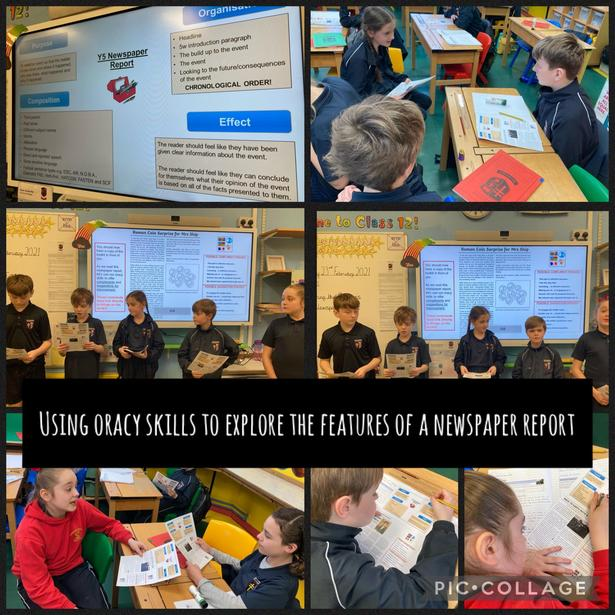 Reading and analysing newspaper reports