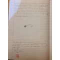 Observational Drawings of Artefacts