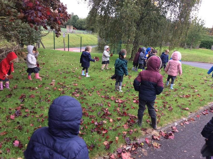 Walking to Welly Garden