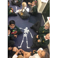 Year 3: We know about our skeleton.
