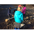 Testing water pollution levels