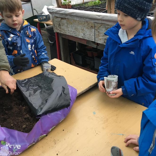 Making a plant pot from newspaper