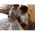 Using microscopes at St Mary's Science Day