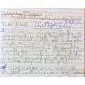 Raiken- Year 6- English