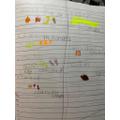 Gracie's Spellings