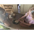 Lilly has been weighing bird seed.