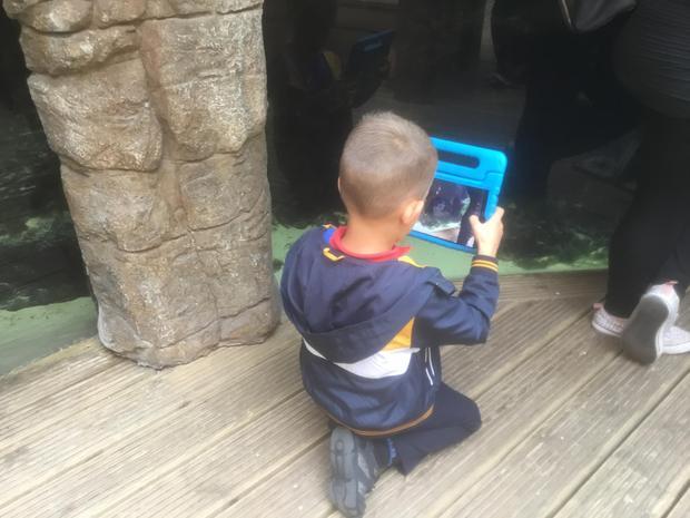 Visit to Bristol Aquarium