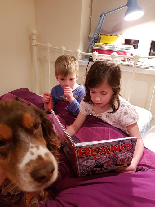 Reading to someone younger and a pet