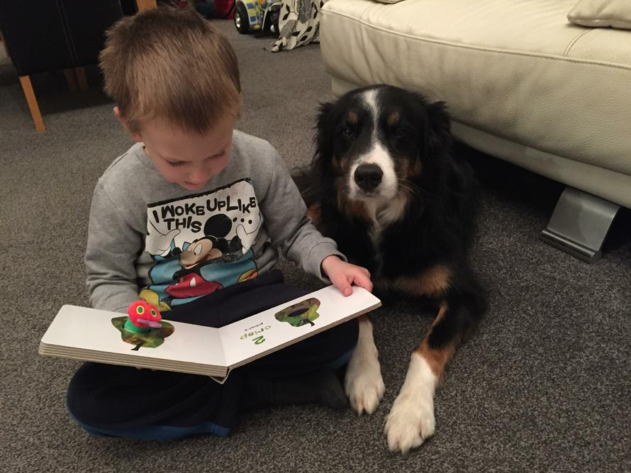 Reading to my pet