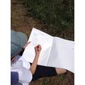 Darwin Sketches - Botany
