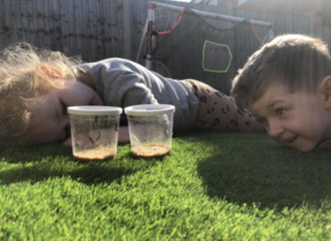 Max and his sister: caterpillars to butterflies