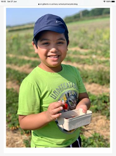 Nathaniel picking strawberries
